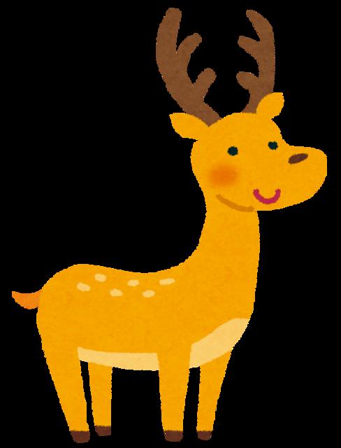 animal_deer.png