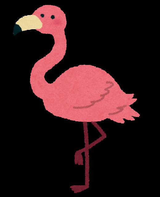 animal_flamingo.png