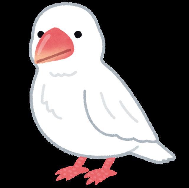 bird_bunchou_white.png
