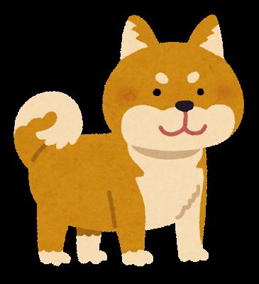 dog_shibainu_brown.png