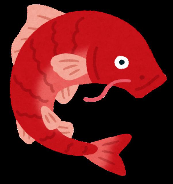 fish_koi_red.png